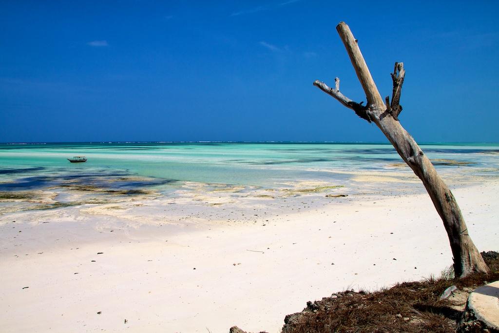 Pongwe, Zanzibar